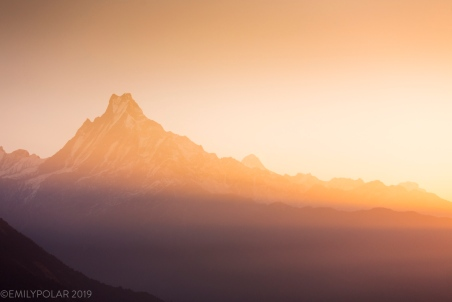 View of Machapuchare mountain at sunrise from Tadapani in the Annapurna region, Nepal.