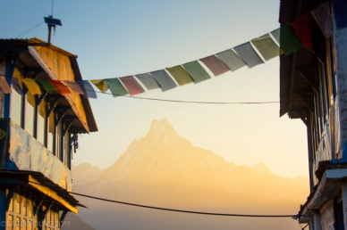 View of Machapuchare among the tea houses at sunrise from Tadapani in the Annapurna region, Nepal.